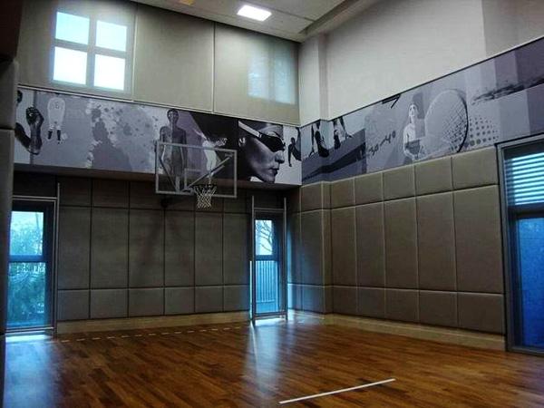 NBA国际级健康好宅:不仅仅是室内多功能主题篮球场