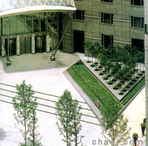 医院外部环境设计现状及应对之道